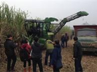 """中联重科""""谷王""""甘蔗机,助力广西糖料蔗基地建设"""
