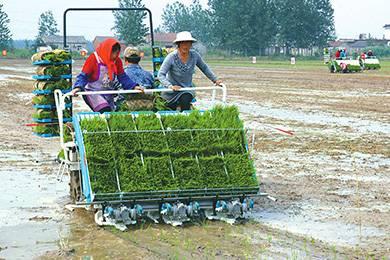 湖南省2015-2017年农机补贴实施方案