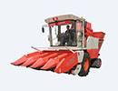 【新品解析】国丰4YZP-4D型自走式玉米收获机