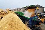 加大对三大粮食作物农业保险支持力度