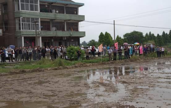 水稻精量直播机在温岭成功研发