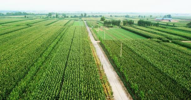 国家现代农业示范区十大主题示范行动