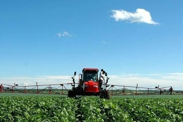 农业部加强秋熟作物病虫防控保丰收