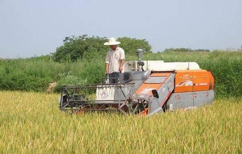 机械化成油料作物增产挖潜能的重要路径