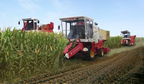 """陕西省""""三秋""""机收玉米将达50%以上"""