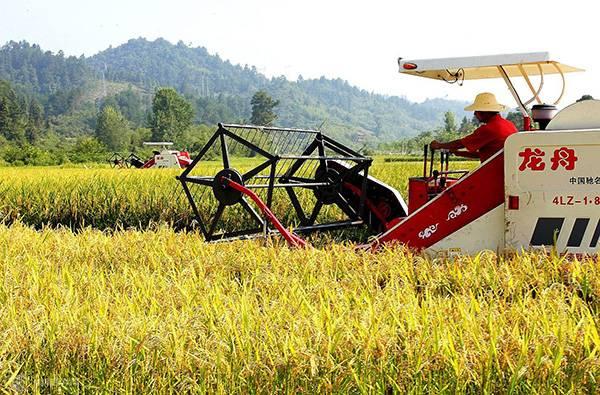 """""""三大行动""""促农机安全生产"""
