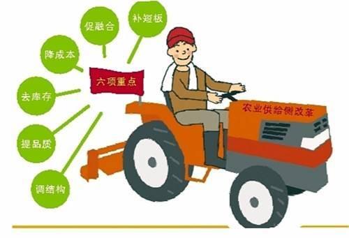 推动农业供给侧结构性改革迈出更大步伐
