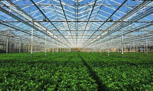 甘肃省首家农光互补现代农业产业园开建