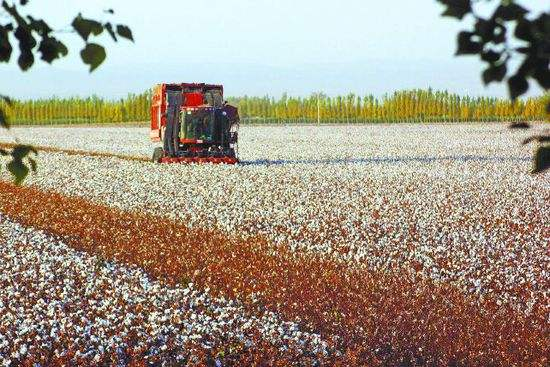 加快农业提质 促进农民增收农村增绿