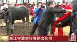 浙江宁波举行春耕文化节