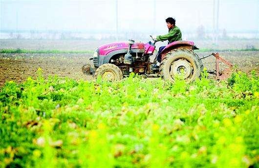 全国已播各类农作物1.1亿亩 完成春播计划8.5%