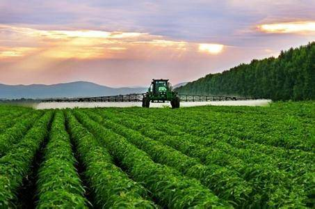 农业部:坚决打赢重大植物疫情防控攻坚战