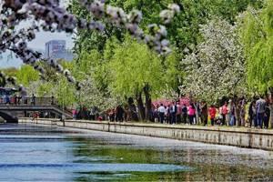 北京:水清树绿城市美