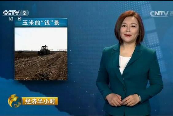 """来自春耕一线的报道:玉米的""""钱""""景"""