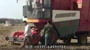 自走式花生收获机作业视频