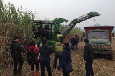 """为促进广西糖业可持续发展,2015年广西加快推进优质""""高产高糖""""糖料蔗基地的建设,以中联重科""""谷王""""AS60甘蔗收割机为代表的甘蔗生产全程机械化产品,将为未来广西500万亩""""双高""""基地的实施推广,提供高适用性农机产品。"""