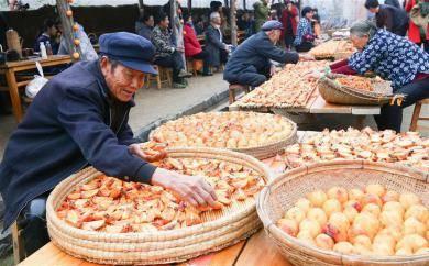 山东举办柿子文化节