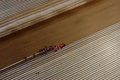 山西推广谷子全程机械化产业技术