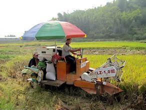 河北省代表委员建言献策让种地成职业让农民有职称.jpg