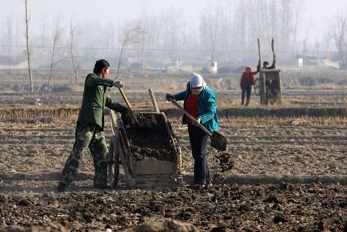 我国耕地土壤长期处于亚健康状况 农民施肥要手下留情