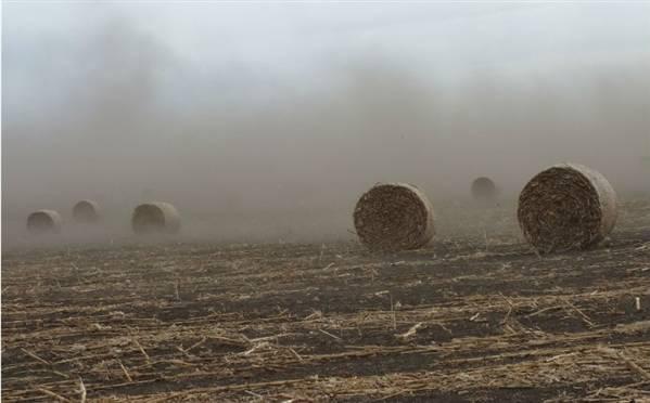 过去40年三分之一农田遭到破坏.jpg