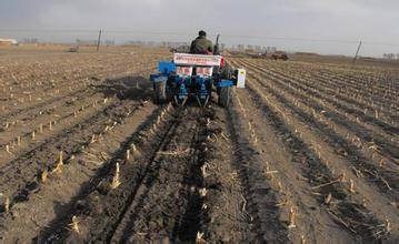 着力推进三大体系建设 加快现代农业发展步伐.jpg