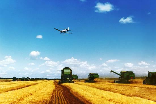 以供给侧结构性改革为引领推进农业现代化