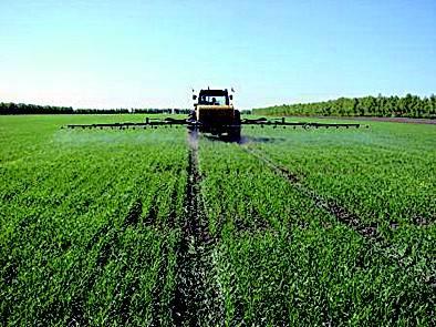 2016年秋冬季小麦病虫害防控技术指导意见