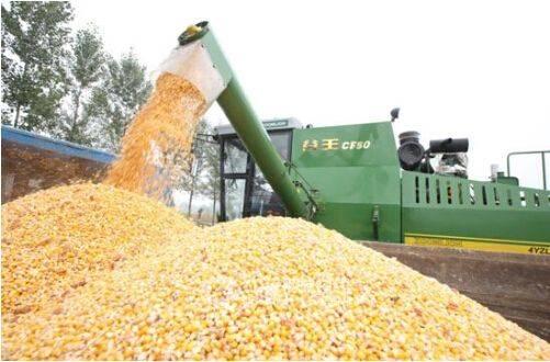 地区小麦玉米双机收籽粒模式试验现场观摩活动在河南省郑州市召开