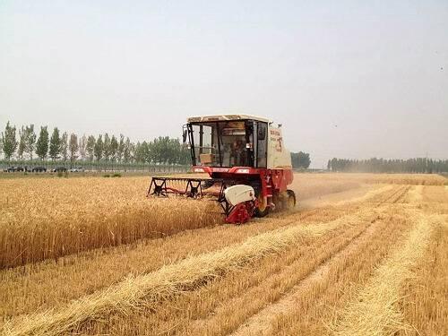 天津市2016年农机补贴资金使用情况(截至10月15日)
