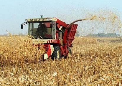 如何正确使用玉米籽粒收获机