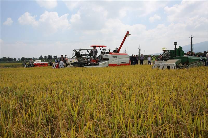 现代农机成现代农业发展中不可或缺的角色