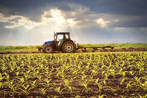 绿色生态农业补贴制度改革方案出台