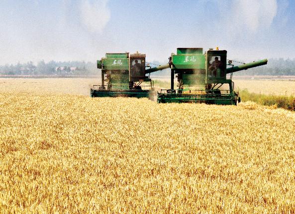 粮食市场化改革.png