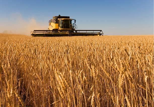一号文件发布:农业板块迎新年首个红包