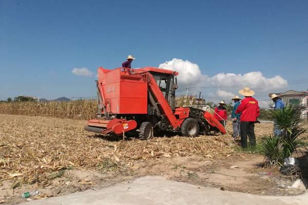 """""""常林·谷丰""""玉米收获机产品赴海南成功试验业峻鸿绩"""