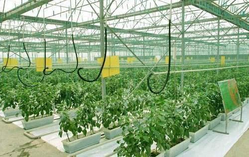山西省推进高效设施农业机械化发展(2016-2020)规划