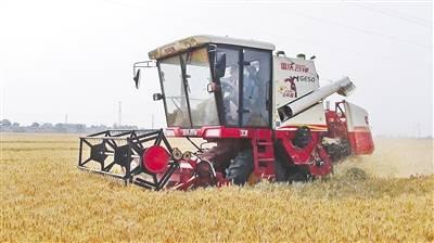 小麦收获机.jpg