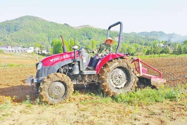 青海蚕豆全程机械化取得关键技术突破