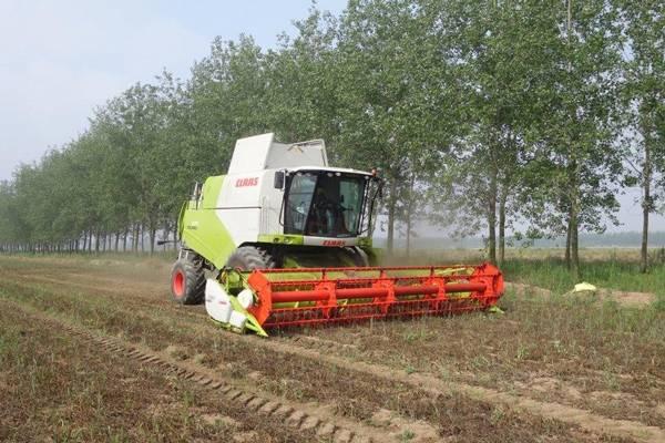 科乐收(CLAAS)助力中德作物生产与农业技术示范园项目