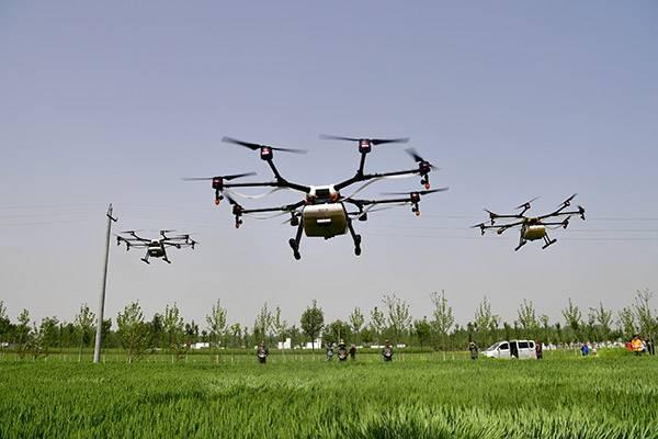 4月18日,工作人员在社旗县晋庄镇小河陈村操作无人机给小麦喷洒农药。.jpg