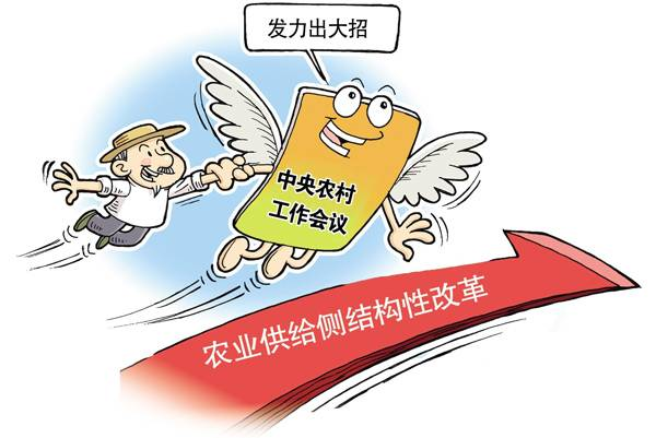 许泽玮:农业供给侧结构性改革需要三种心态