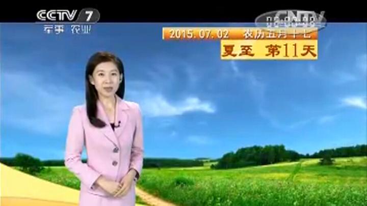 古人是如何看天气问:看云,动物,植物什么的应该怎么看?