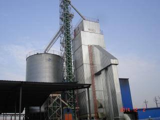万谷300t/d粮食干燥机
