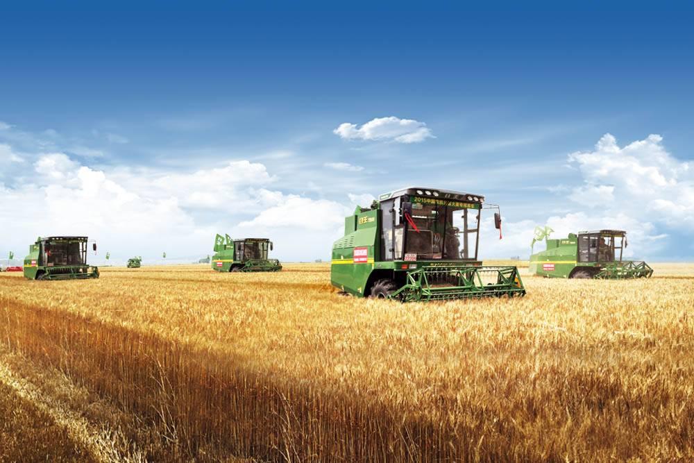 全国夏收开镰 谷王小麦机全面投入夏粮抢收 助力夏粮丰产丰收