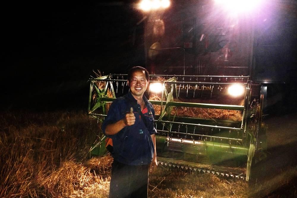 谷王夜间急抢收-农机创客竖起大拇指点赞